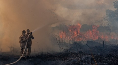 Brazil bans land clearance blazes for 60 days