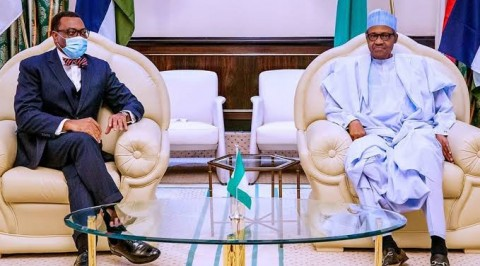 AfDB Probe: Buhari Assures Adesina of Support