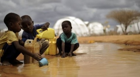 Cholera kills 16, infects 985 in Adamawa