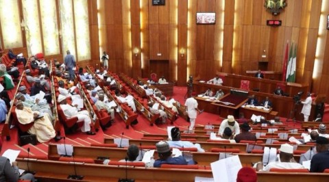 Senate Seeks Imposition Of 35 Percent Import Duty On Soap Noodles
