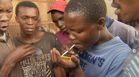 NDLEA Fight Against Drug Abuse in Kano