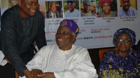 Banji Akintoye alleges plans to enslave Yoruba race