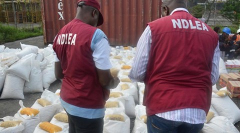 Adamawa Residents Lauds NDLEA in the Fight Against Drug Abuse.