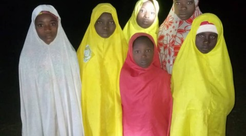 Insecurity: Troops Rescue 30 Girls, 8 Cattle in Katsina State