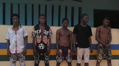 Ogun Police Nab Cultists over Death of 25-Year-Old