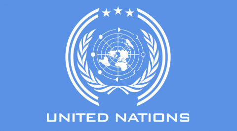 Group seeks UN intervention over xenophobic attack