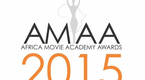 Full list of winners at 2015 AMAA Award Ceremony