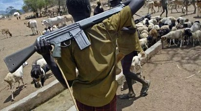 Delta community laments herdsmen attacks