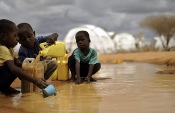 Cholera outbreak claims 12 lives in Adamawa