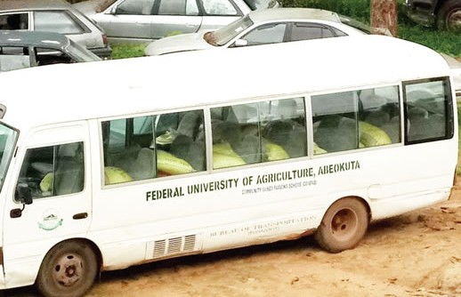 Customs intercepts FUNAAB bus with cannibis