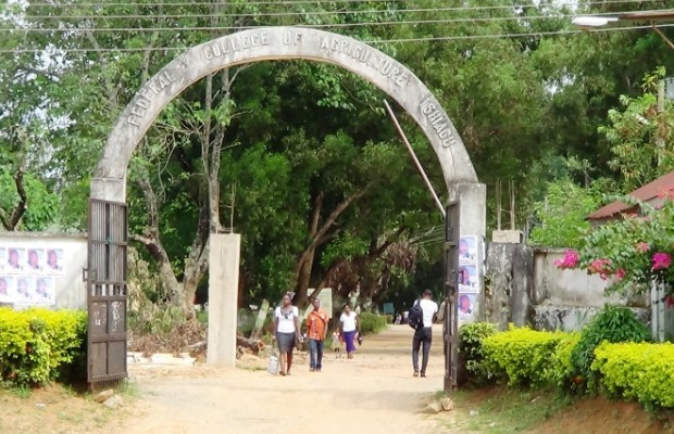Federal college of agriculture Ibadan closed down