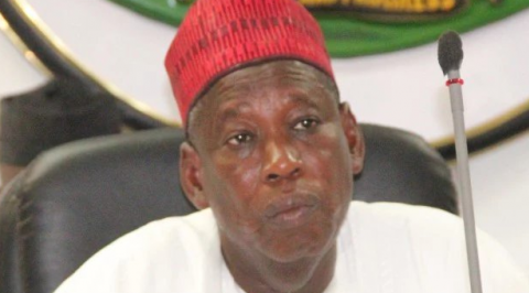 Kano Speaker remover was to target Governor