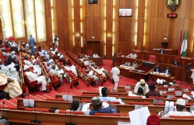 Senates approves N348.3BN subsidy payment