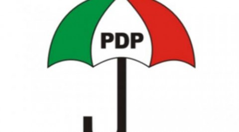 PDP chairman blames indiscipline for party crisis