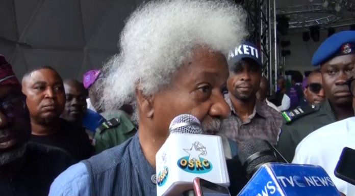 Security: Wole Soyinka calls for state of emergency