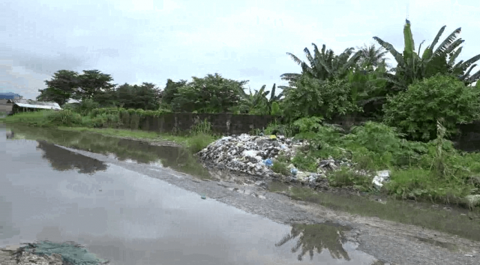 Environmentalist urges Deltans to relocate