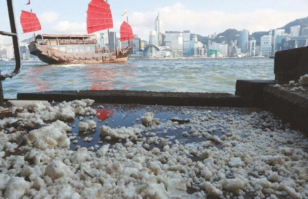 Honk Kong closes 13 beaches over palm oil spill