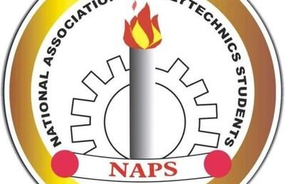 NAPS Charges FG on Incessant Killings and General Insecurity