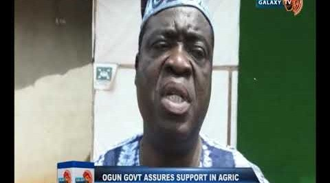 Ogun Govt Assures Support In Agric Industrialisation