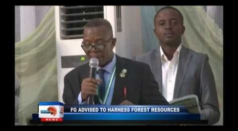 FG advised to harness forest resources