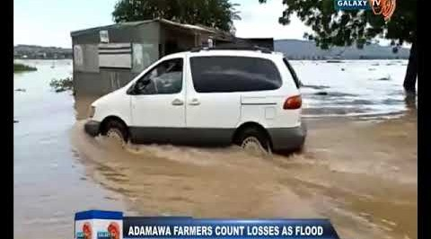 Adamawa Farmers Count Losses as Flood Ravages 50 Villages