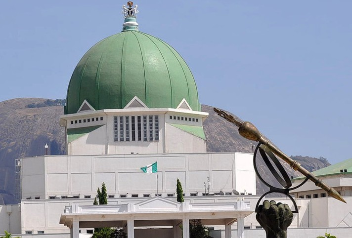 Treatment abroad: Nigerians blast Legislature